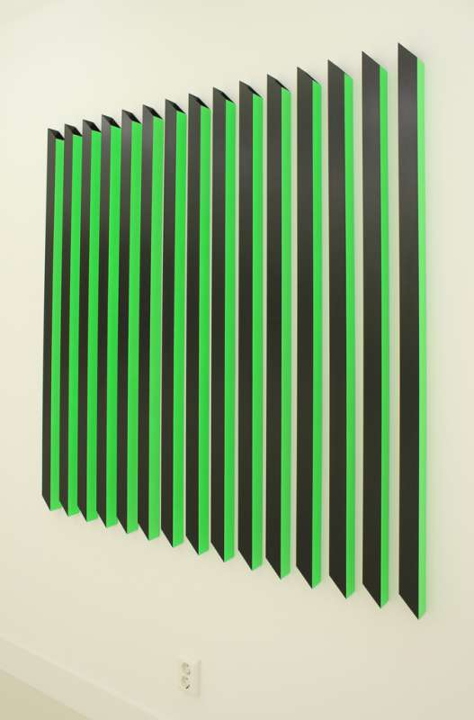 Rana Begum, #185 (green and black), 2009