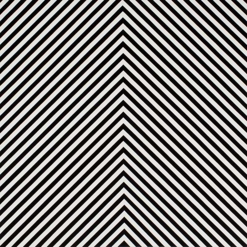Mountain Stripe 90-1 B&W, 2009